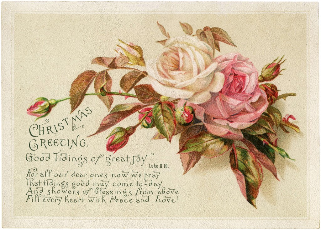 Vintage Christmas Roses Image The Graphics Fairy