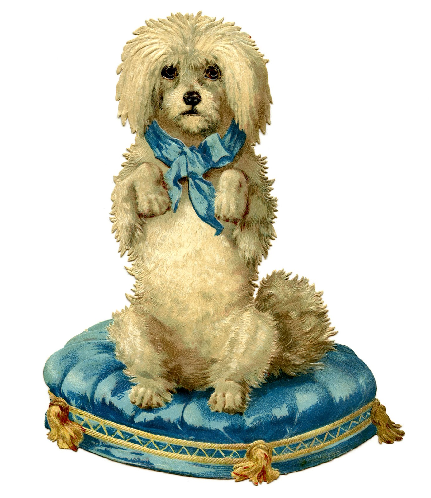 Darling Dog On Blue Tufted Cushion The Graphics Fairy