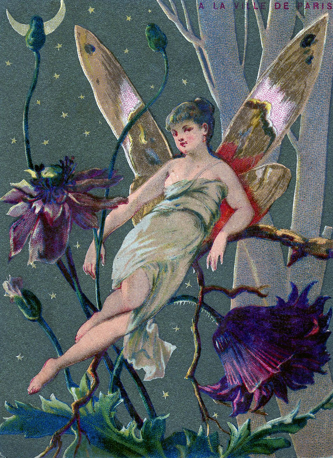 Vintage Graphic Fairy In Moonlight The Graphics Fairy