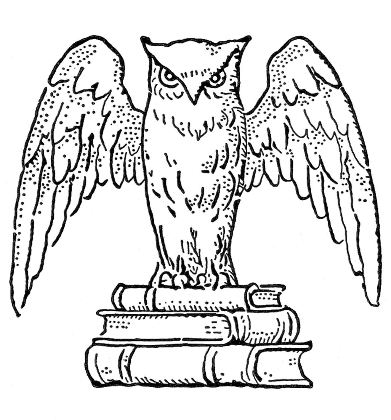 Harry Potter Owl Clipart