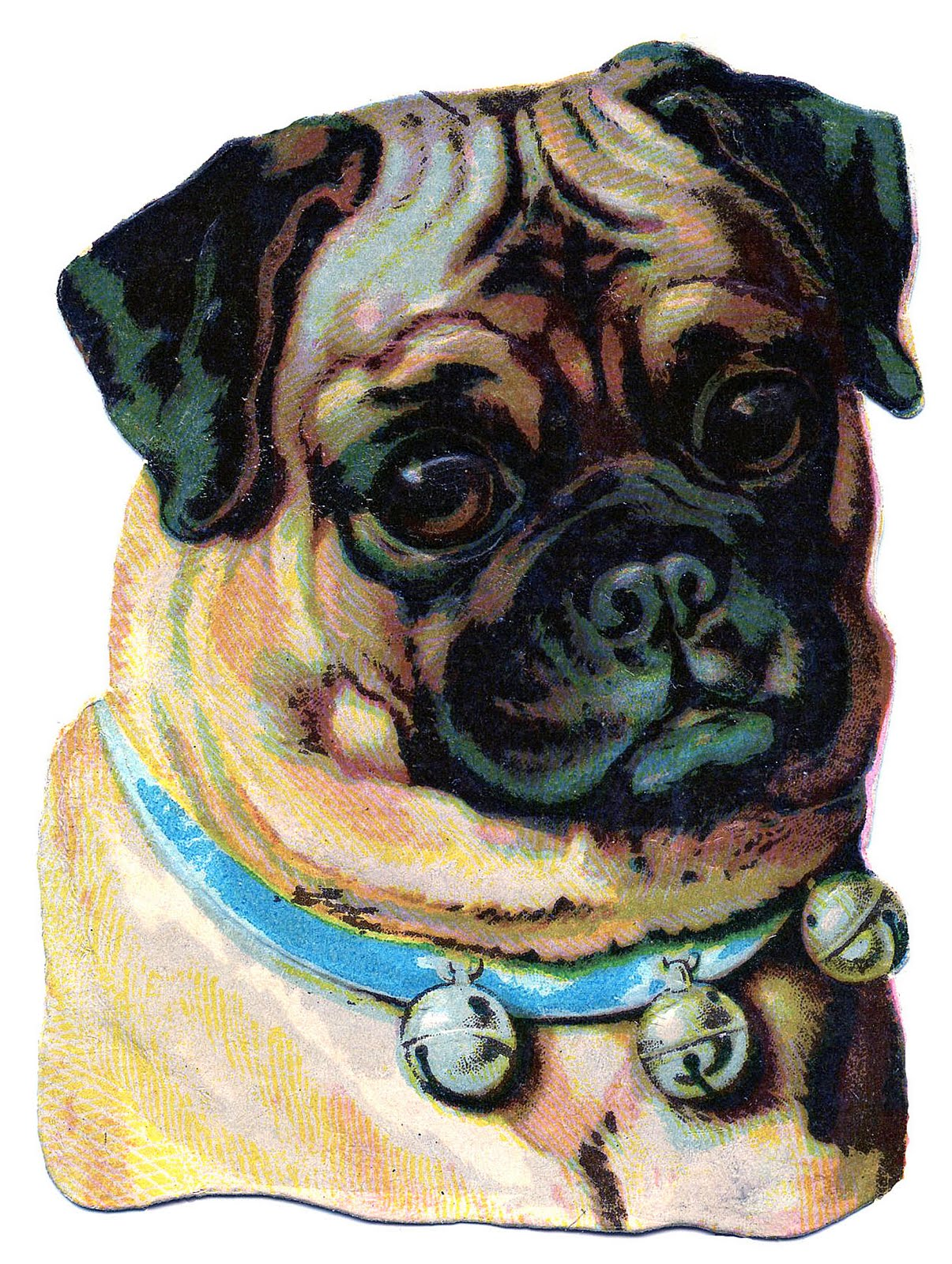 Vintage Clip Art Darling Pug The Graphics Fairy