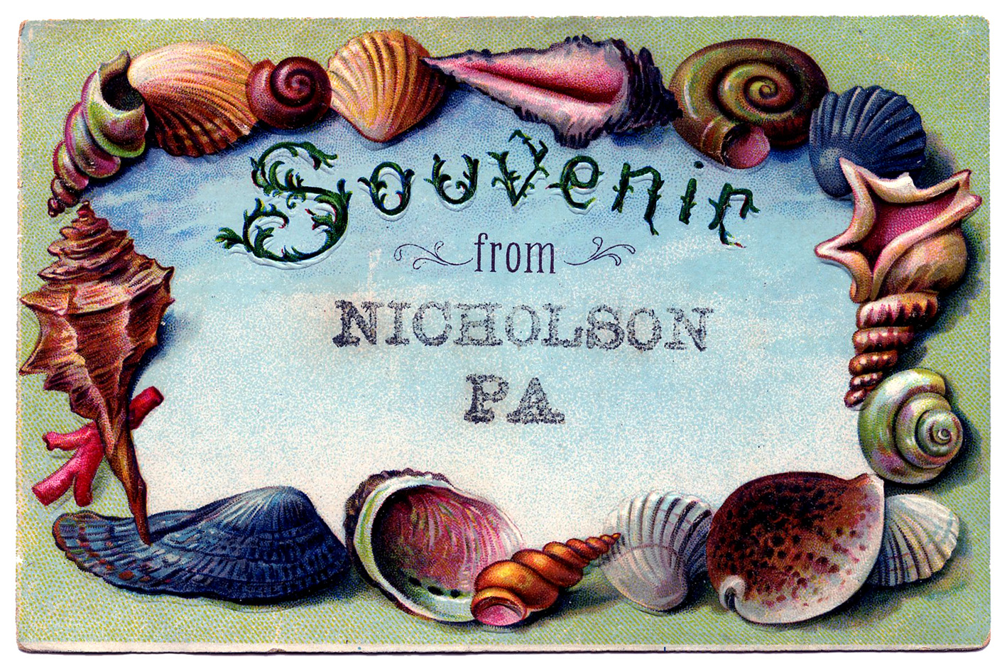 Vintage Clip Art Souvenir Seashell Postcard 2 The