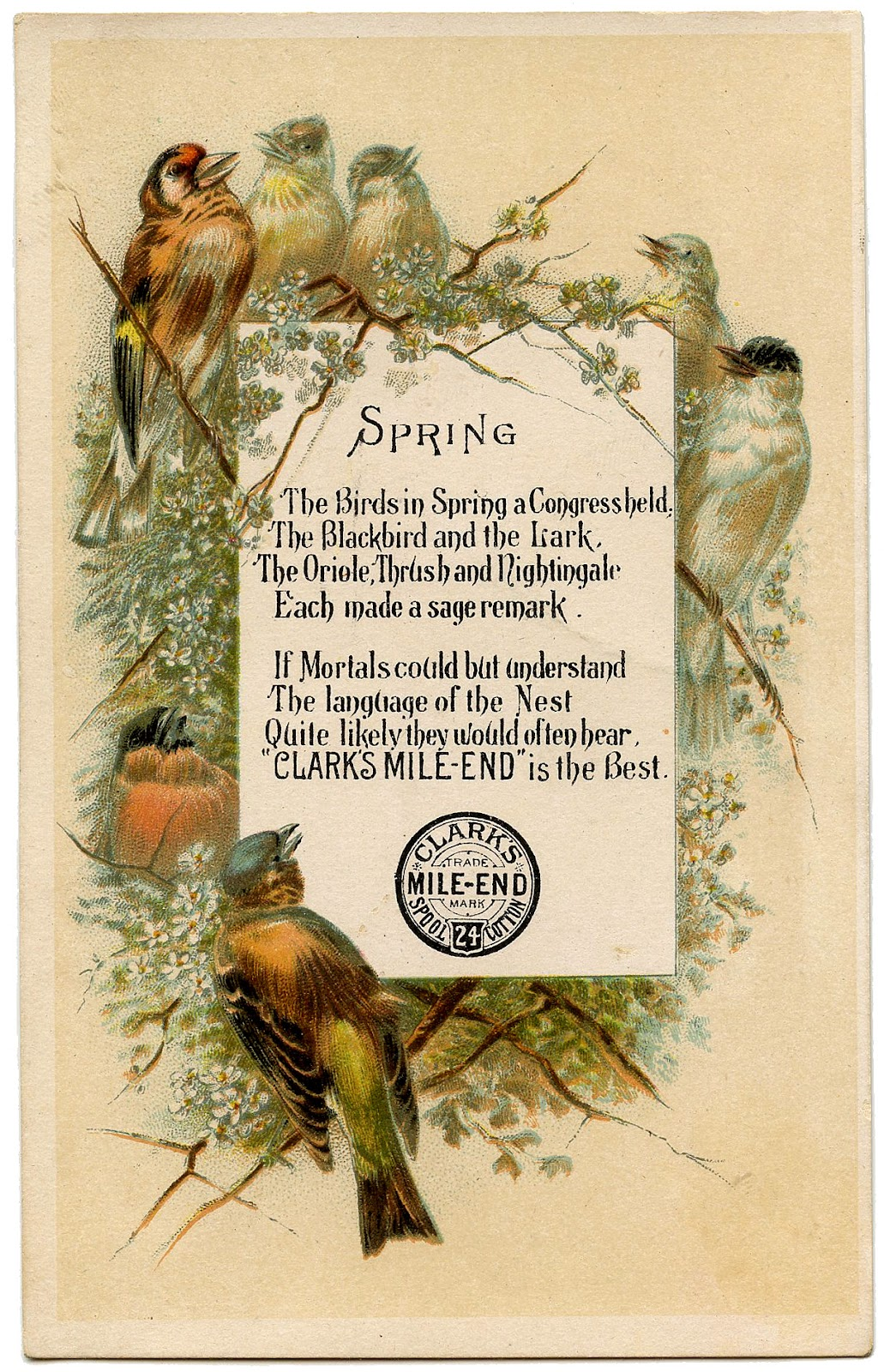 Vintage Frames Birds And Flowers The Graphics Fairy