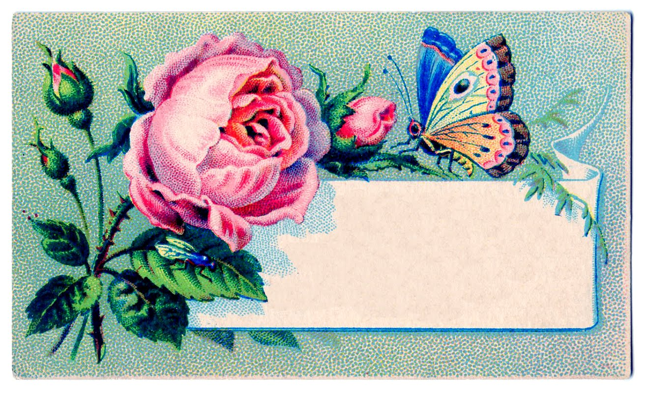 Vintage Images Label Rose Amp Butterfly The Graphics Fairy