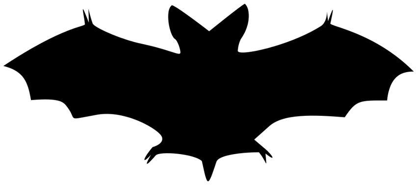 Image result for Bat Clip Art