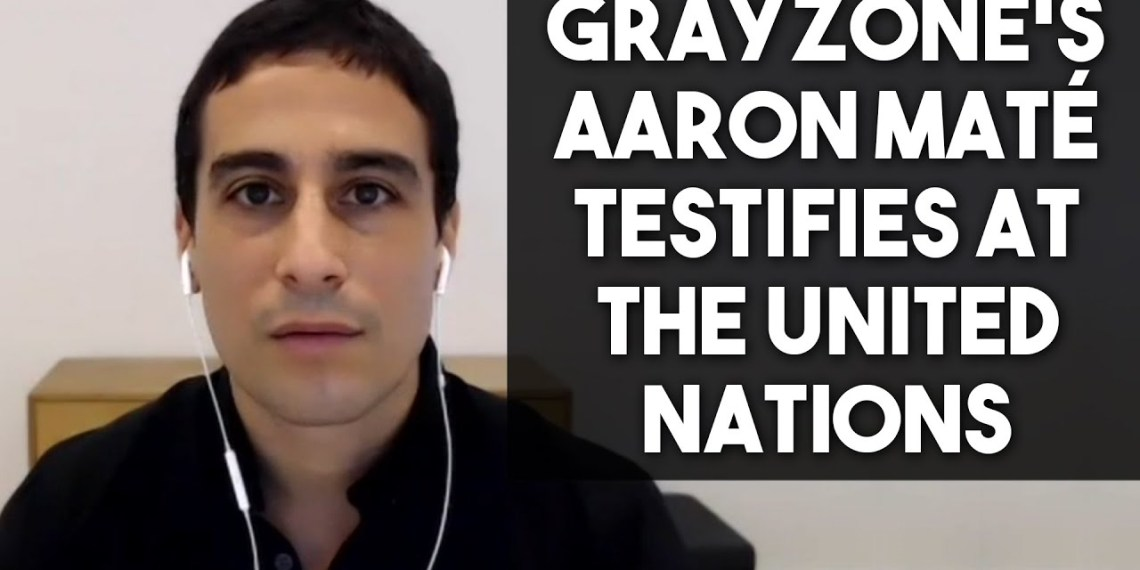 Aaron Maté Syria OPCW UN