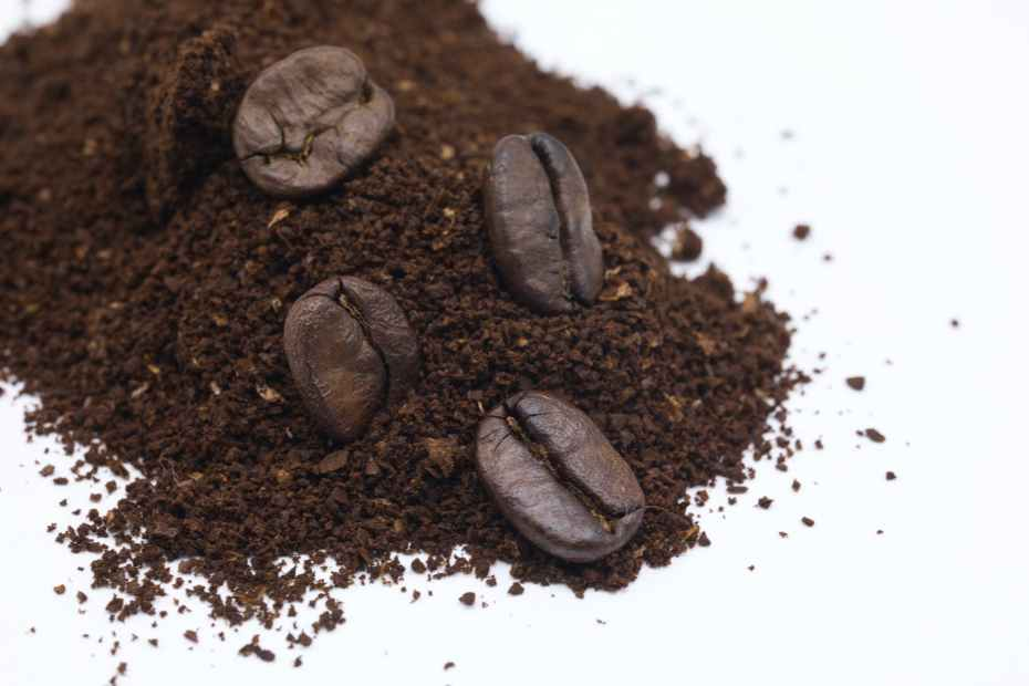 black coffee beans on white surface
