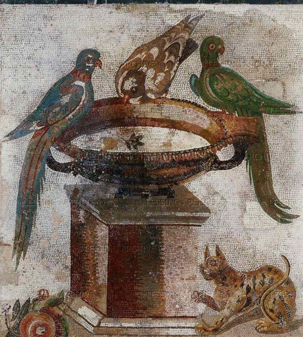 Birds Drinking from a Bird Bath Cat Underneath, Mosaic Roman Pompeii