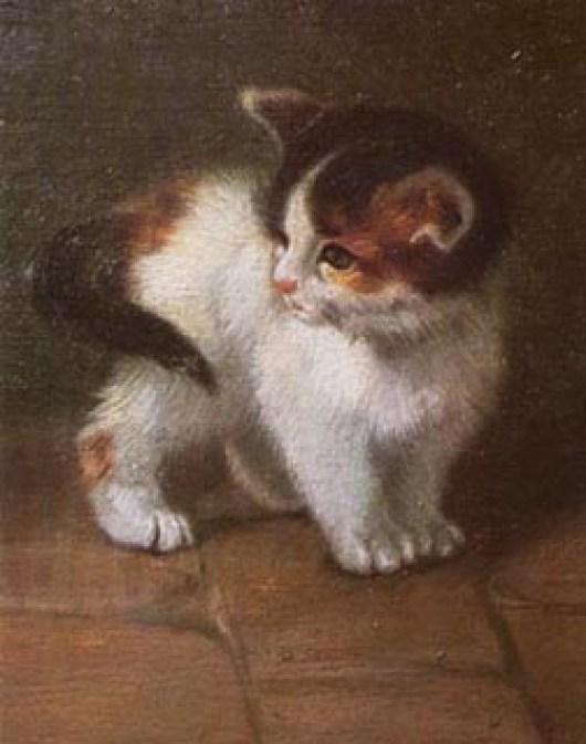 Kitten Julius Adam II Private Collection