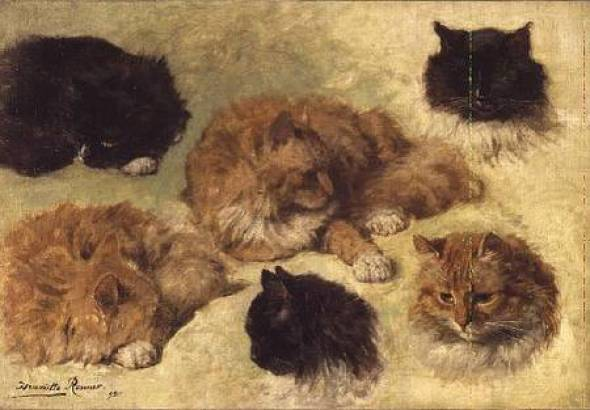 Studies of Cats Henriette Ronner-Knip Private Collection