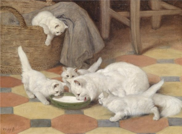 Mother and Kittens Drinking Milk Private Collection