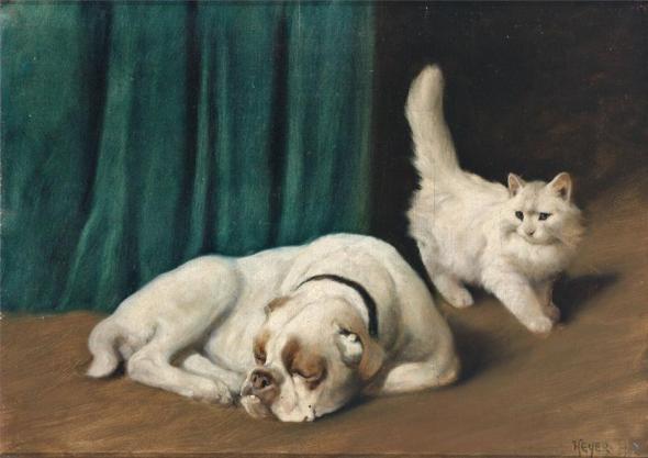 Ruhende Bulldogge und weiße Perserkatze Arthur Heyer Private Collection