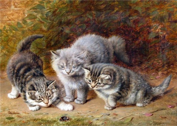 Kittens Watching a Bug Horatio Henry Couldrey Private Collection cats in 19th century art
