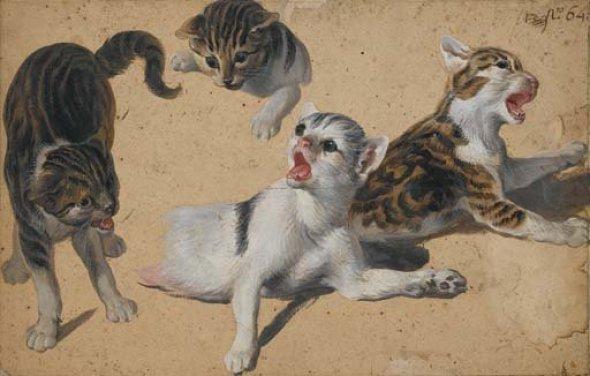 Kittens at Play Alexandre Francoise Desportes Private Collection kittens in art, Perronneau, Crespi, Desportes