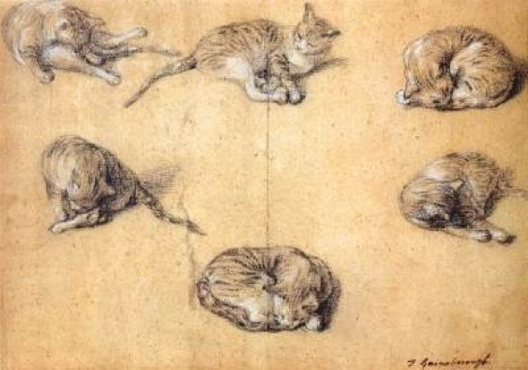Six Studies of a Cat 1765-1770 Black and White Chalk on grey paper Thomas Gainsborough Rijksmuseum, Amsterdam cats in art