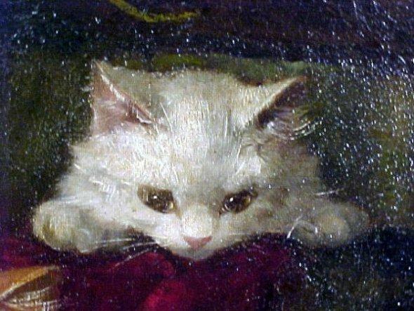 White Kitten Brunel de Neuville