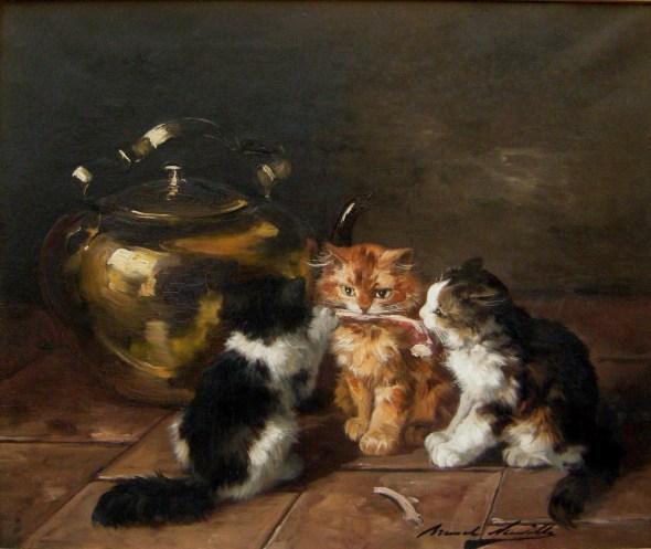 Cats Full