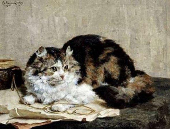 A Tabby Cat, Charles Van den Eycken