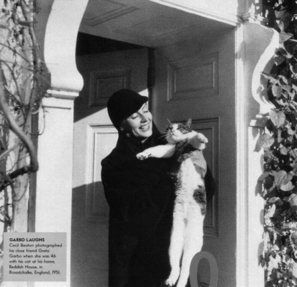 Greta Garbo and Cat by Cecil Beaton 1951, felines in film