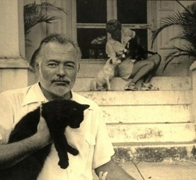 Hemingway and cats in literature