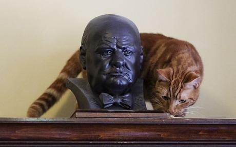 Churchill and Jock VI