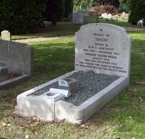 Able Seacat Simon's Grave Photo by Acabashi