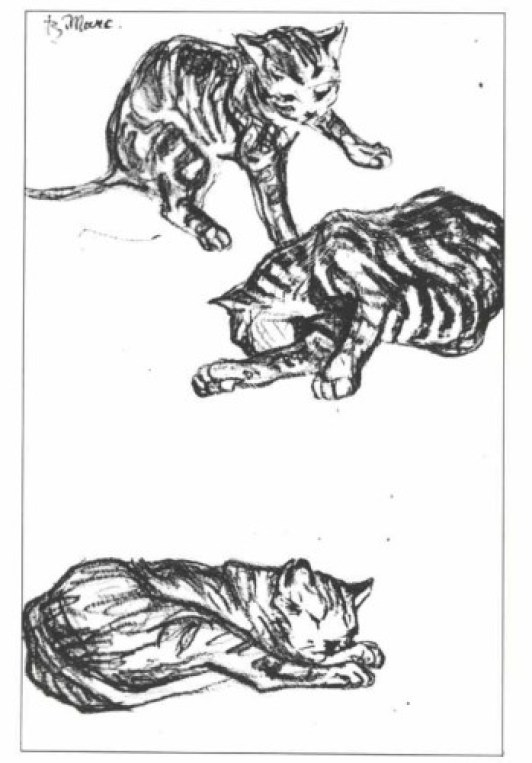 Franz Marc, three cats ink drawing, cats in art