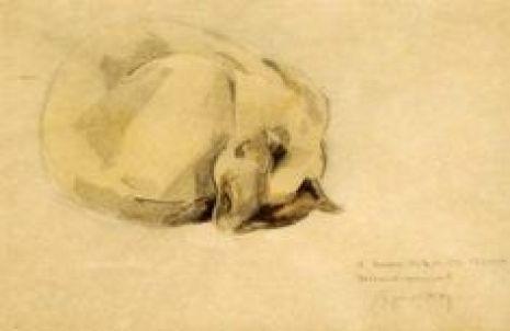 Cat Sketch (2) Jacques Lehmann Nam, cat art