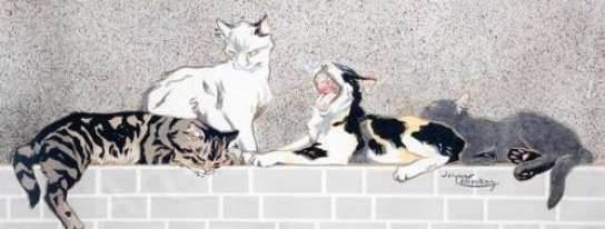 Chats sur un muret, Lehmann Nam, cat illustrations