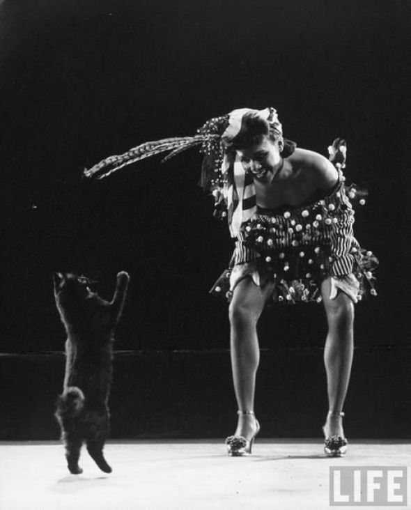 Dancer Katherine Dunhan Playing with Blackie 1943, black cats, famous cats