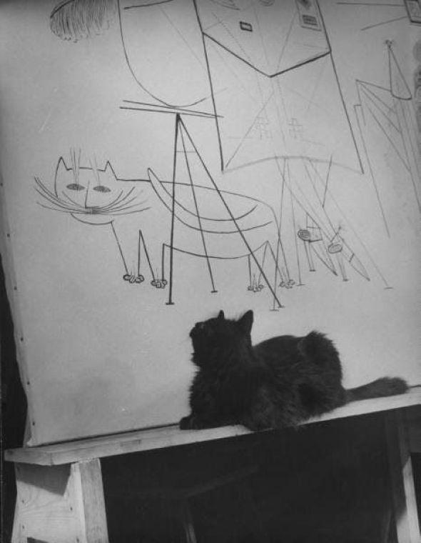 Mili's cat Blackie looking at himself in a Steinberg mural. black cats