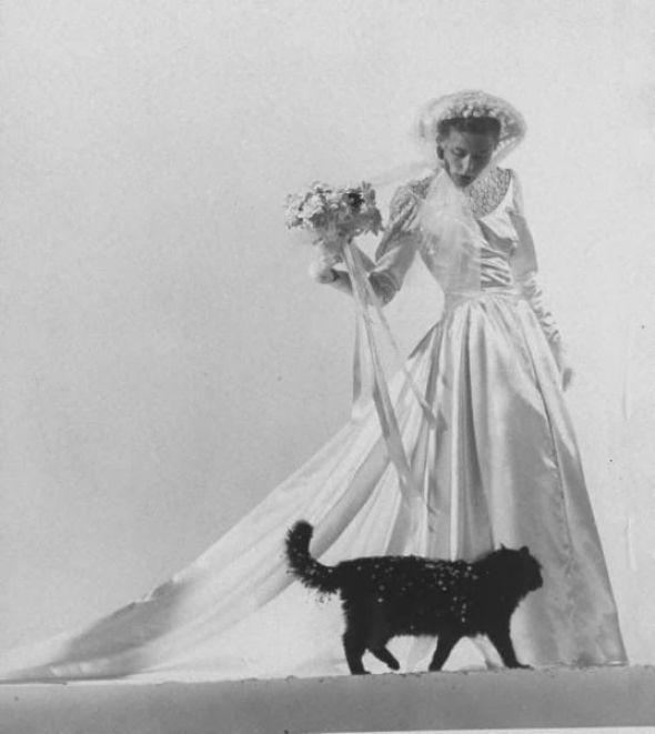 The Photographer's Cat. Gjon Mili, black cats, famous cats