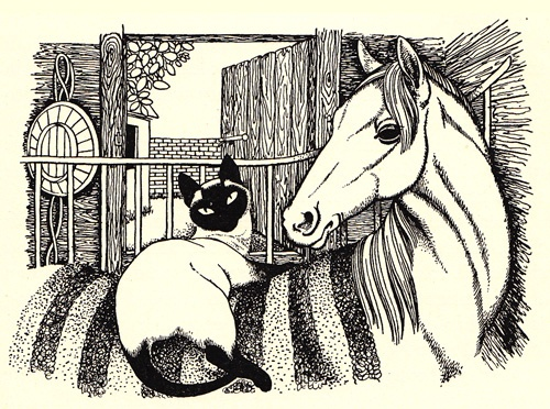 From 'The Blue Flag' by Kay Hill illustration by Dame Eileen Mayo