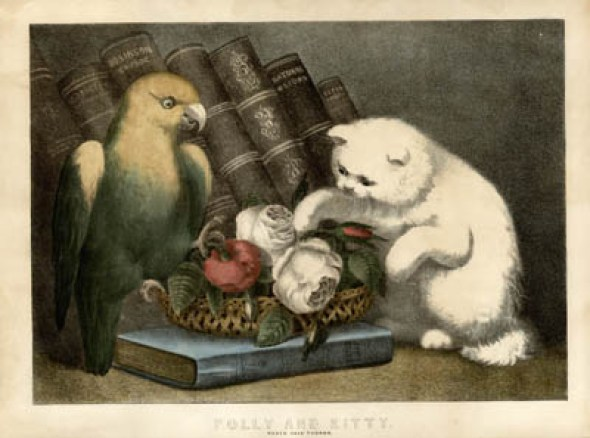 Kitty and Parrot, currier and ives