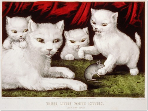three little white kitties and their first mouse
