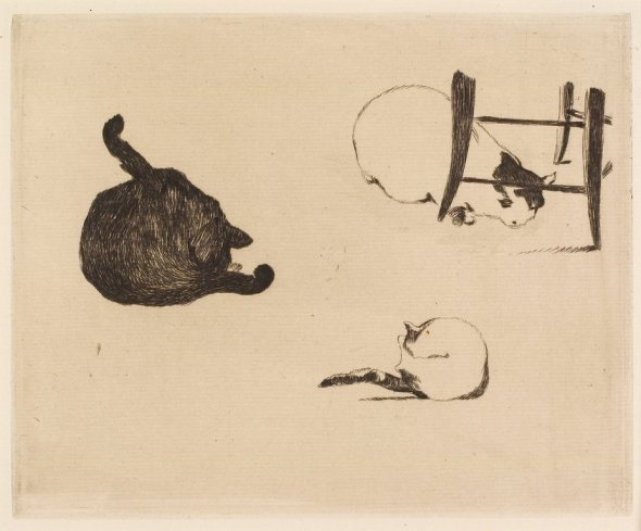 Three Cats, 1868 E. Manet
