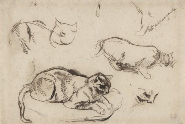 E Delacroix Studies of a Cat