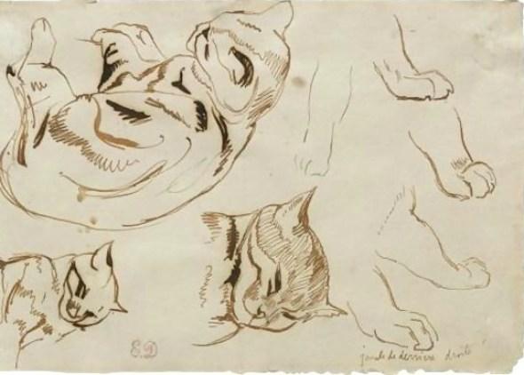 Delacroix, Sheet of Studies of a Sleeping Cat