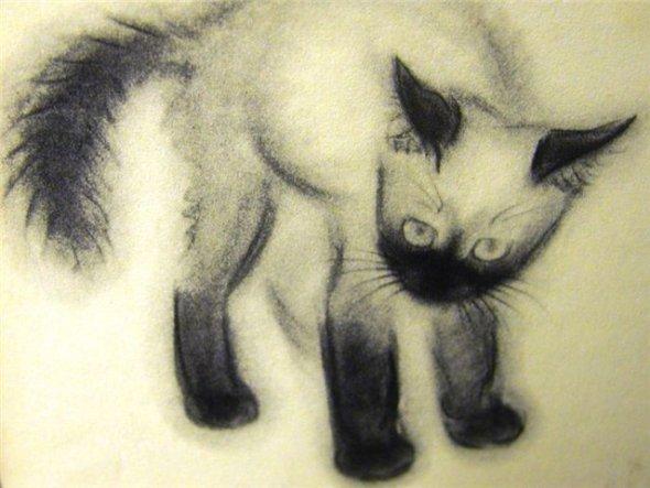 Siamese Kitten C. Turlay Newberry