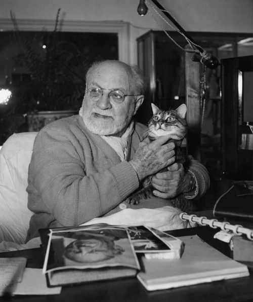 Henri Matisse in bed with a cat
