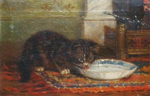Kitten Drinking Milk, Wilson Hepple