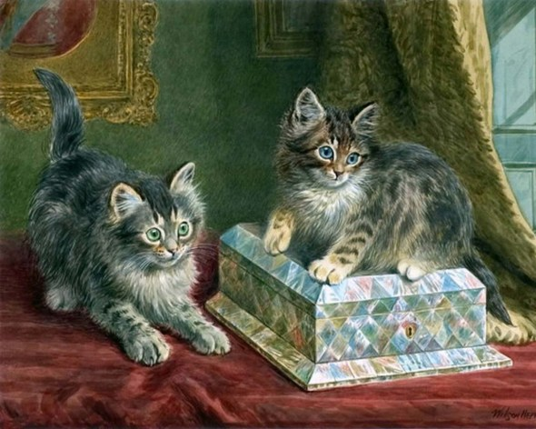 Two kittens and a box Wilson Hepple