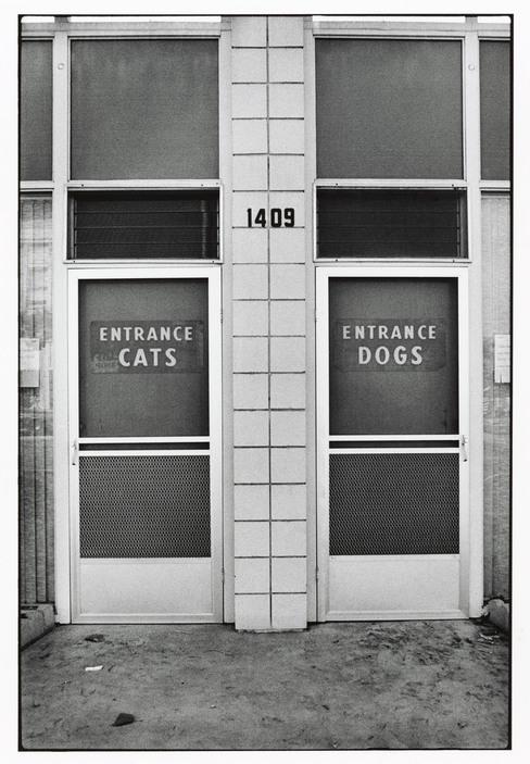 Elliott Erwitt Alameda CA 1978
