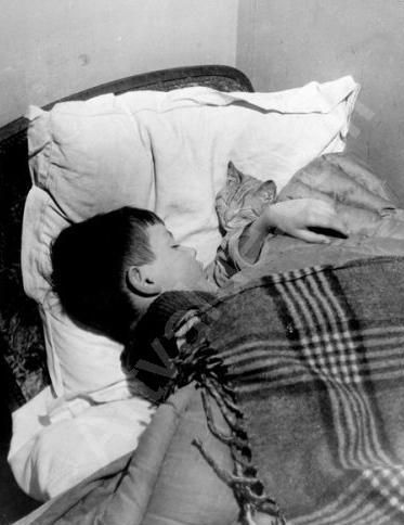 Vincent et le chat photo by Willy Ronis, Ronis's son Vincent with Cat
