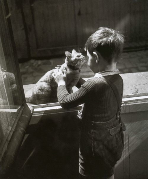 The Caretaker's Cat, Willy Ronis, Le chat de la concierge, Paris 1947