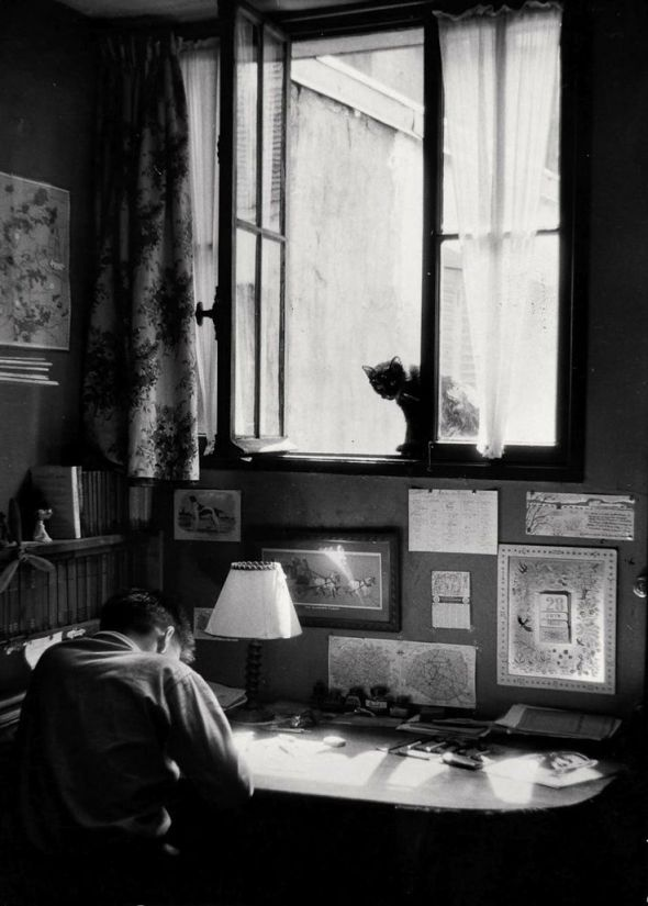 Willy Ronis, Vincent et le chat, Paris, 1955