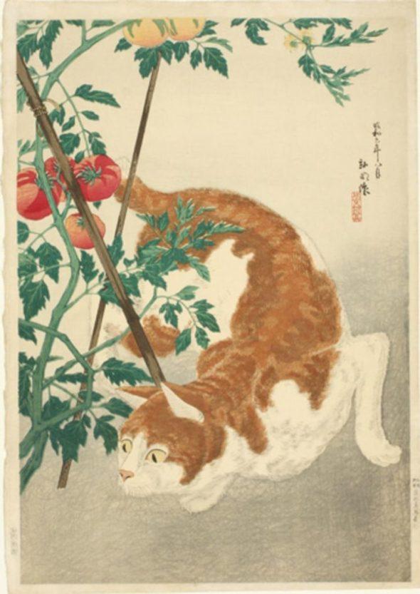 Brown Cat and Tomato Plant Takahashi Hiroaki (Shotei), Japanese cat art