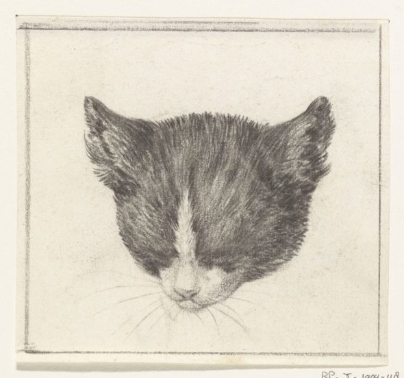 Cat Head Looking Down, Jean Bernard