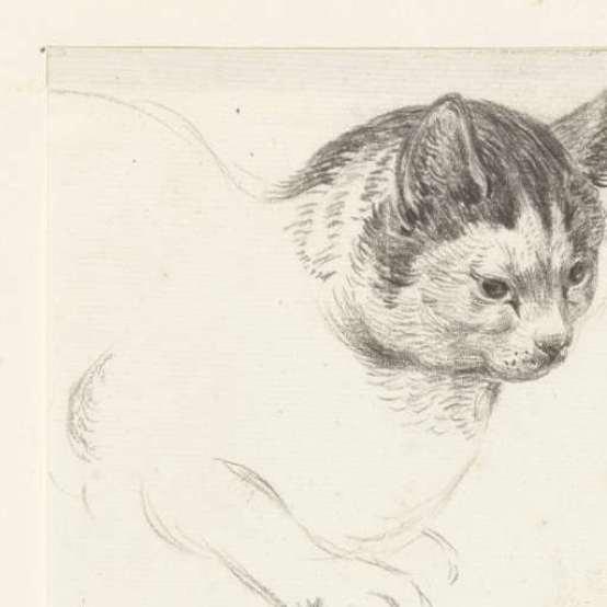 Cat, Looking Right, Jean Bernard