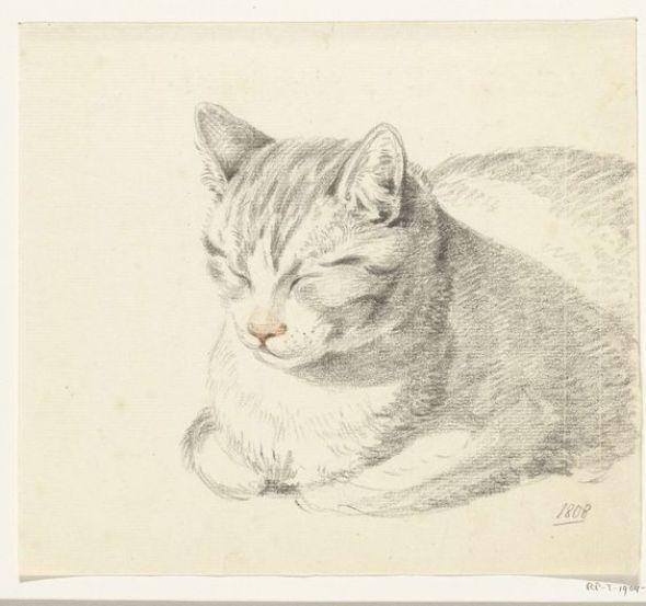 Cat sketch ~ artist Jean Bernard, c.1808